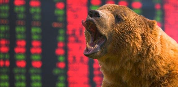 דובים דב ירידות בורסה / צלם: פוטוס טו גו , רויטרס